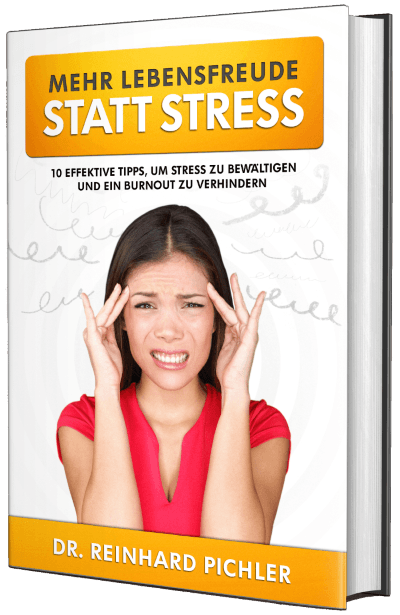 Reinhard Pichler Ebook Stress